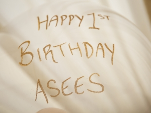 20180407-asees-birthday-party-16