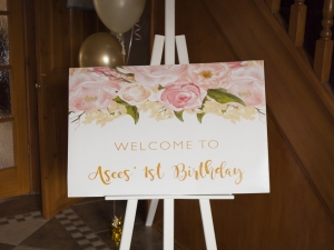 20180407-asees-birthday-party-3